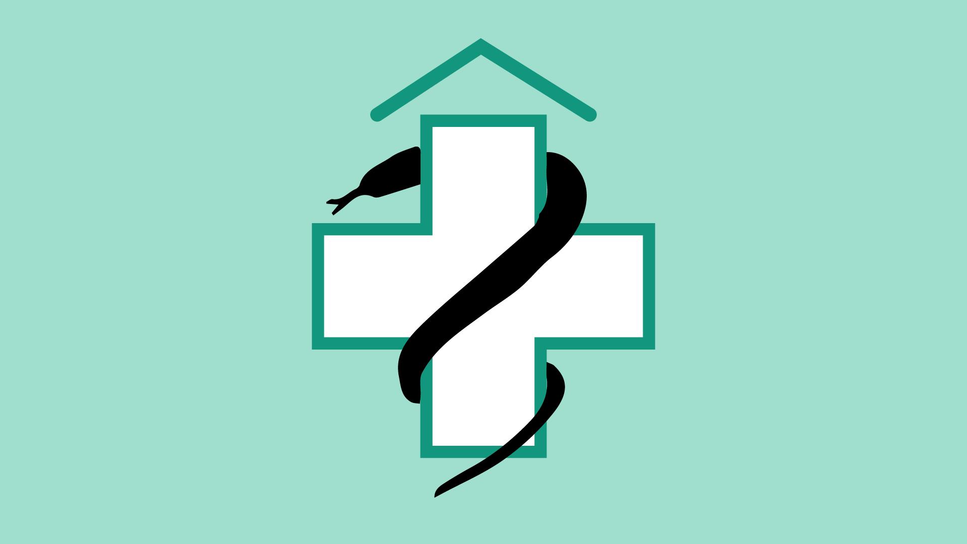 LVHS Logo